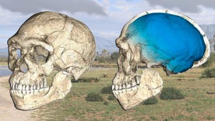 El homo sapiens es 100 mil años más viejo de lo que se creía