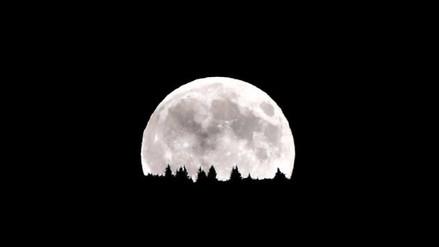 Fotos | Así son las casas lunares diseñadas por la NASA