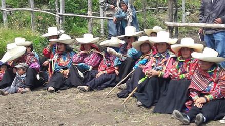 Instalan 32 mil plantones de especies forestales nativas en valle andino