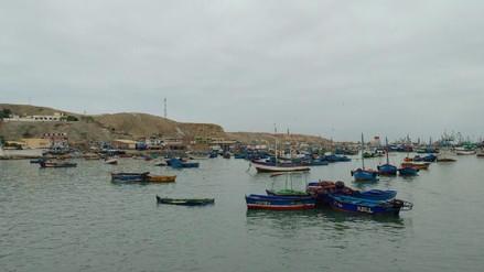 Piura: Pescadores temen que producción de Merluza disminuya debido a la informalidad