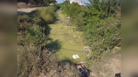 Alcalde de Pimentel busca solucionar contaminación causada por drenes
