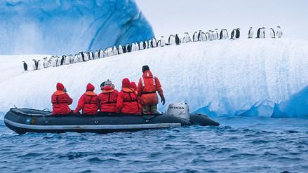 Fármacos y cocaína contaminan el mar de la Antártida