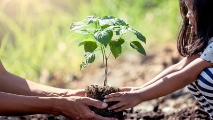 4 acciones que puedes hacer en tu comunidad para contribuir con el cuidado del aire