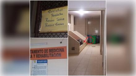 Vídeo muestra a roedores en hospital Las Mercedes de Chiclayo
