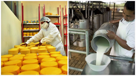 Gobierno publicó el Reglamento de la Leche y Productos Lácteos