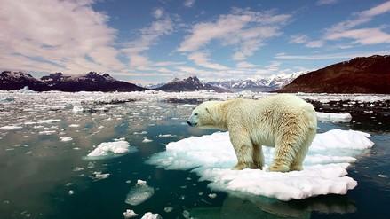 Tenemos solo tres años para salvar la Tierra de una catástrofe medioambiental