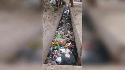 Chiclayo: Vecinos utilizan acequia como deposito de basura