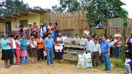 Entregan jaulas y alimento balanceado para crianza de cuyes en Salas