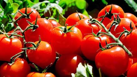 El tomate redujo a la mitad aparición de cáncer de piel en ratones, revela estudio