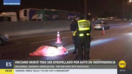 Un anciano murió arrollado en la Panamericana Norte