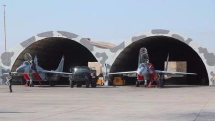 Chiclayo: vuelos militares en riesgo por presencia masiva de gallinazos