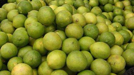 Advierten que precio del kilo de limón seguirá subiendo hasta octubre