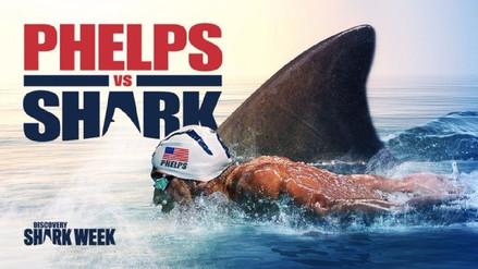 Michael Phelps perdió por 2 segundos su carrera contra un tiburón blanco