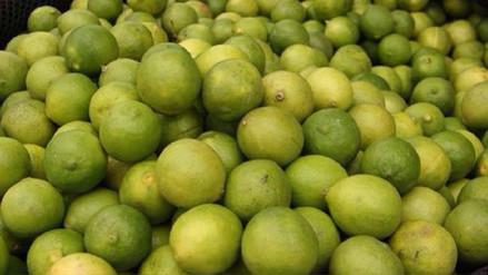 ¿Por qué el precio del limón se ha encarecido en los mercados?
