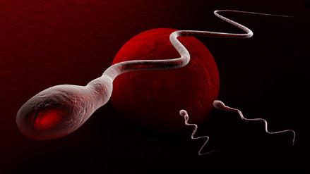 Los hombres producen mitad de espermatozoides, ¿peligra la reproducción humana?