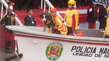 Las mascotas fueron las otras protagonistas de la Gran Parada Cívico Militar