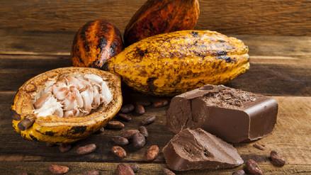 Un verdadero chocolate no es una golosina