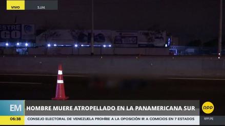 Un hombre murió atropellado en la Panamericana Sur