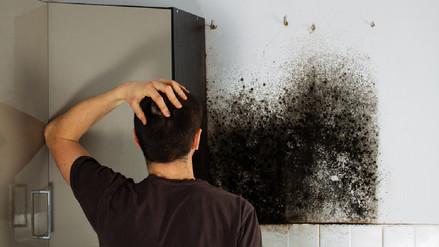 Qué hacer para evitar los estragos de la humedad extrema