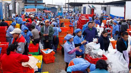 """Ministerio de la Producción: """"No hay desabastecimiento de pescado en el país"""""""