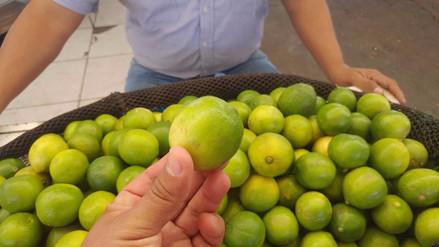 Limón se vende a un sol la unidad en mercados de Lambayeque