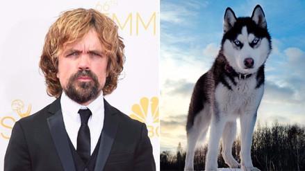 Actor de 'Games of Thrones' pide a fans no comprar perros husky