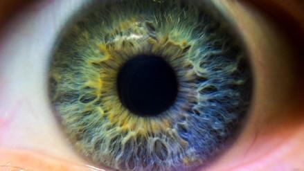 El ojo tiene bacterias que se transmiten durante el embarazo