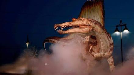 Investigan en Marruecos la venta en Facebook de los restos de un dinosaurio