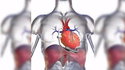 ¿Por qué el corazón está en el lado izquierdo?