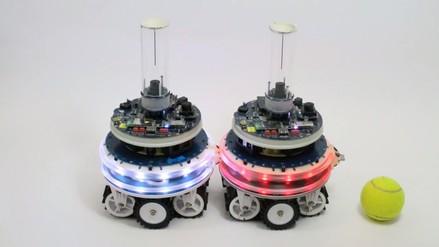 Científicos crean robots capaces de unirse, dividirse y repararse a sí mismos