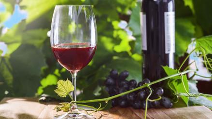 Beber vino moderadamente puede ejercitar el cerebro