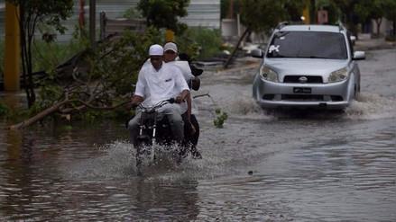 Lluvias y viento por huracán María derriban árboles y postes en República Dominicana