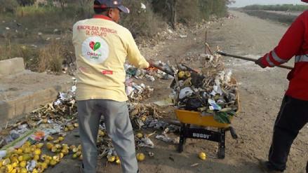 Campaña de limpieza para mitigar riesgo aéreo por gallinazos