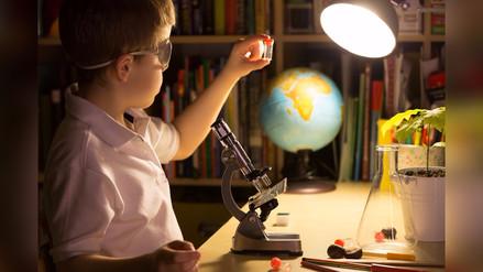 ¿Por qué se debe promover la curiosidad científica en los niños?