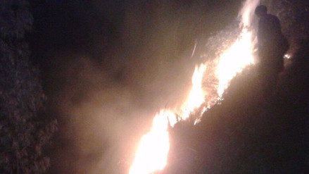 Jauja: incendio forestal afecta áreas naturales en Julcán