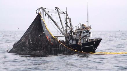 Olaechea responde porqué bajarían multas para la pesca ilegal de anchoveta