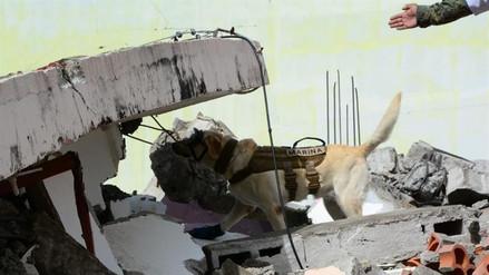 El costo de la reconstrucción en México superará los $2000 millones