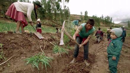 Presupuesto Agricultura para 2018 busca reducir a la mitad la pobreza rural