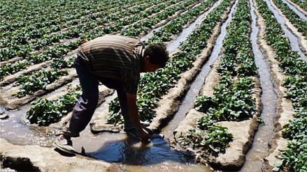 Siembra y Cosecha de Agua, una herramienta contra los efectos del cambio climático