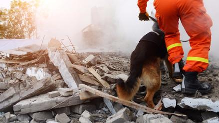10 consejos útiles para sobrevivir a un terremoto