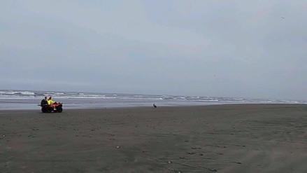 Dan de alta a uno de los escolares que casi muere ahogado en playa Pimentel