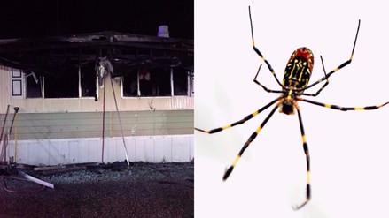 Un hombre quiso acabar con las arañas en su casa y terminó incendiándola