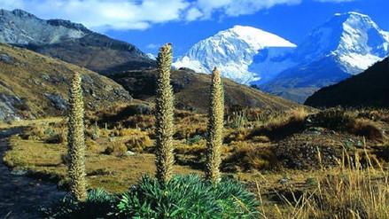 Parque Nacional Huascarán no atenderá este domingo por Censo 2017