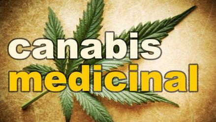 Argumento de Elmer Huerta a favor del cannabis fue destacado en el Pleno