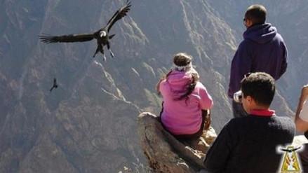 Visitas al Valle del Colca se realizarán con normalidad el día del Censo