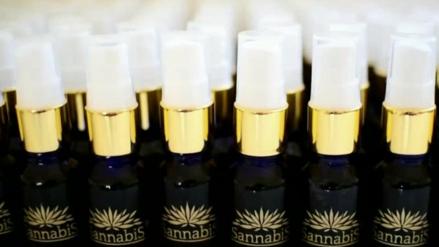 Asociaciones a favor del cannabis medicinal exigen cambios en la ley