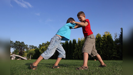 ¿Cómo evitar la agresividad en los niños?
