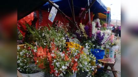 La Oroya: en 50% se incrementó precio de flores por Día de Todos los Santos