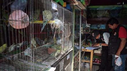 Alistan protesta contra venta ilegal de animales en Trujillo