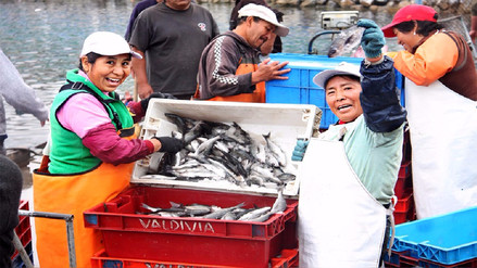 Desde enero se han formalizado a más de 4,809 dueños de embarcaciones pesqueras